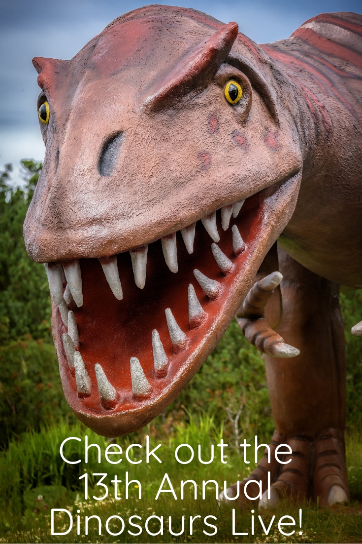 What does everyone think of in February? DINOSAURS! Well, probably not, but they are still totally awesome! If you are in the McKinney area during February you should have dinosaurs on the brain for one very cool reason: the 13th Annual Dinosaurs Live exhibit!