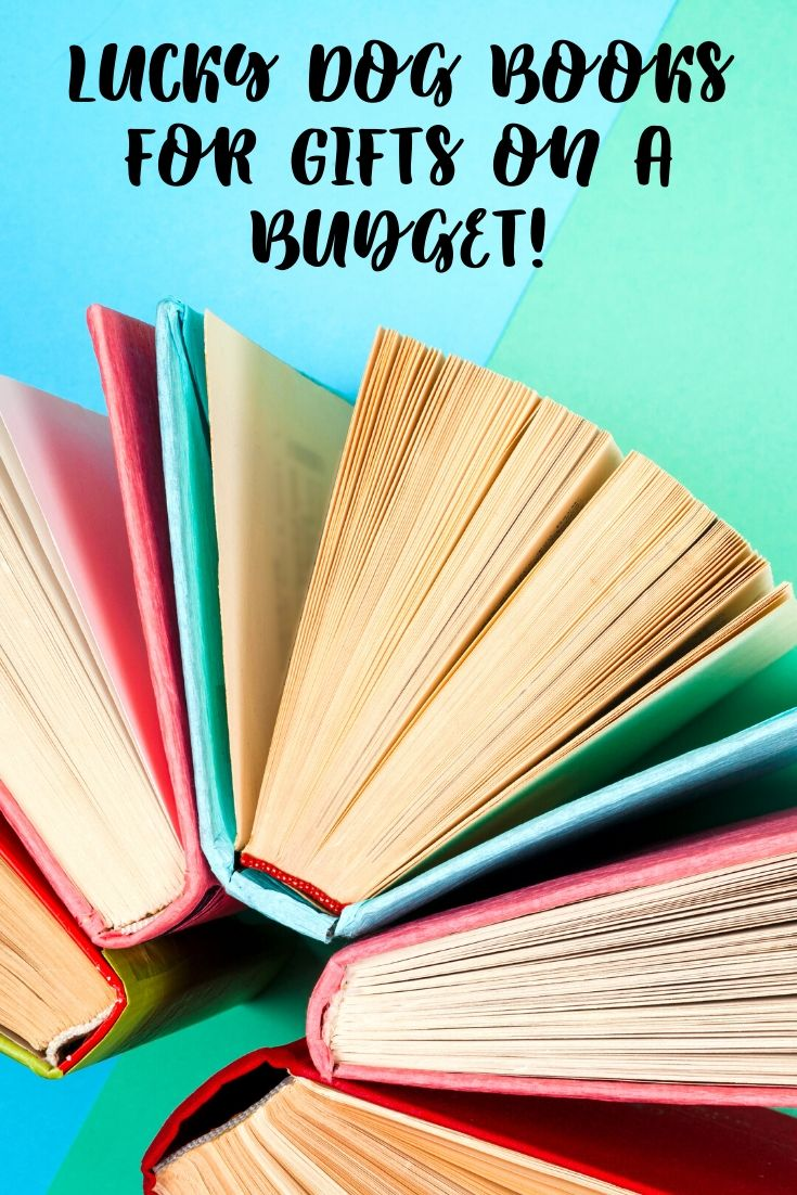 Looking for holiday gifts on a budget? Everyone loves a good discount, and this bookstore drives one of the hardest bargains in Texas. Nothing is over $3 at Lucky Dog Books in Dallas, making it nearly impossible to leave empty-handed.