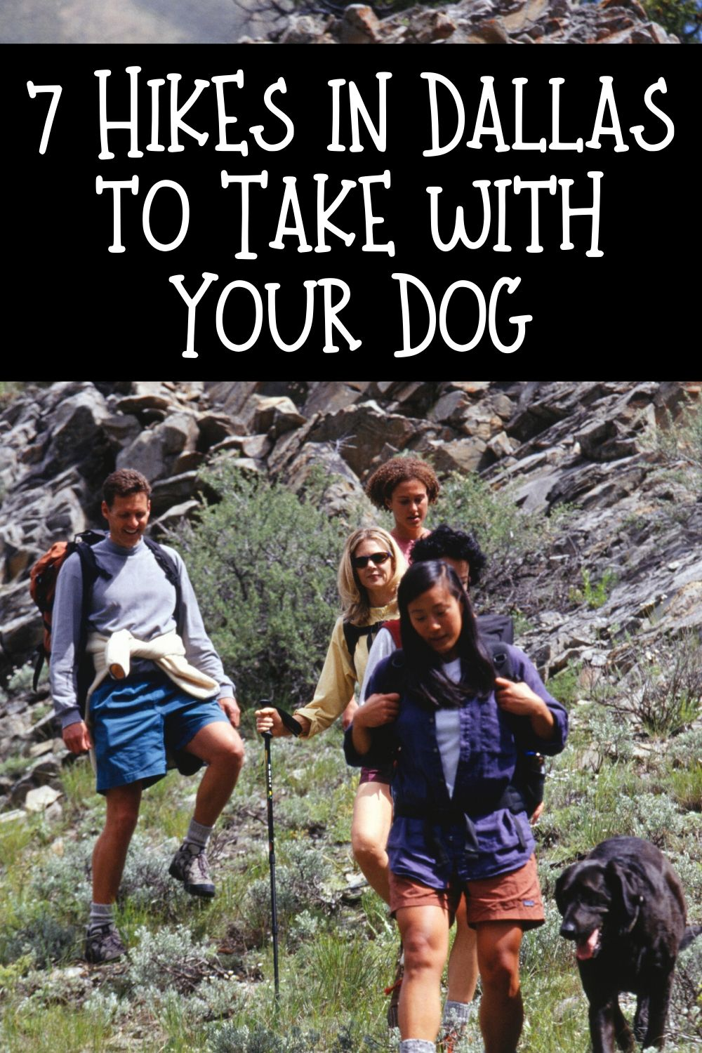If you are new to Dallas living you might not know that there are some great Dallas hiking trails out there you can enjoy with your dogs. Hiking is great exercise for people and for dogs! If you are trying to mix it up and get away from your standard after work walk, these hiking trails might be just the thing!
